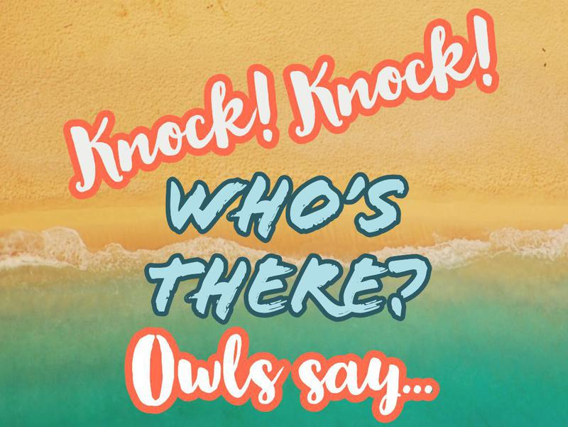 The Best Knock Knock Jokes For Kids Familyminded