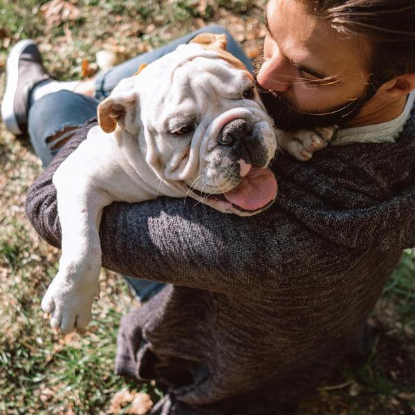 17 of the Friendliest Dog Breeds for Your Family