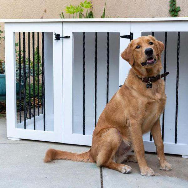 Outdoor Dog Kennel With Roof Ideas