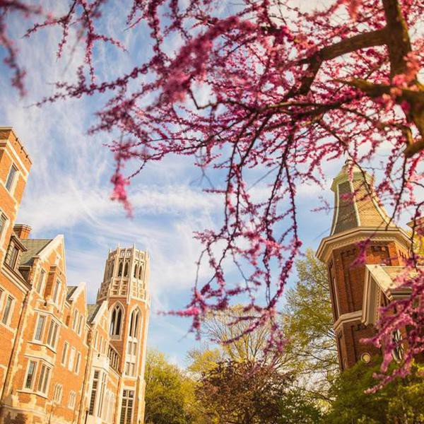 The Most Expensive Colleges in the U.S. by State