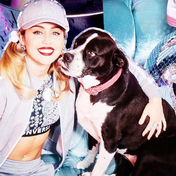 Hounded by Fame: Celebrities Who Love Dogs