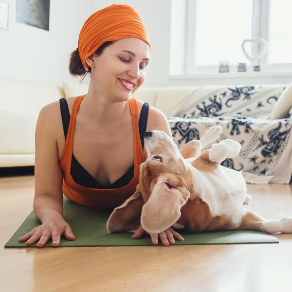 Tips for Tackling Downward Dog With Your Dog